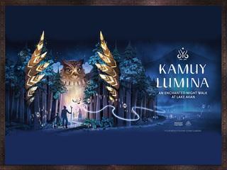 ■夜の森を歩いて愉しむナイトウォーク「カムイルミナ」 ※イメージ