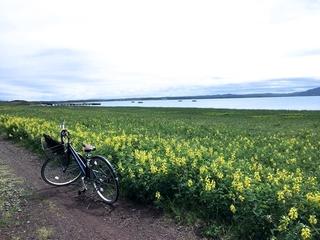 ◆サロマ湖周辺をカメラ片手に自転車で巡ろう♪※イメージ