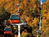 """◆紅葉ゴンドラ/札幌国際スキー場""""紅葉ゴンドラ""""!秋の空中散歩をお愉しみ下さい。"""